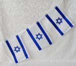 Slinger met 8 Israel vlaggetjes van 20 x 14 cm