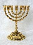 Menorah, schattige kleine vergulde Menorah / Menora met de symbolen van de 12 stammen. Afmeting 13 x 13 cm