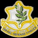 Reversspeld / broche met het logo van het Israelische leger, de IDF