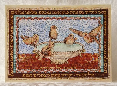 Wenskaart-uit-Israel, Lukas 12:7 wees dan niet bevreesd: u gaat veel musjes te boven.