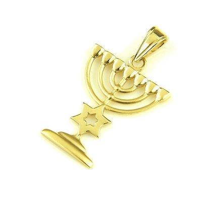 Menorah met Davidster hangertje 14K goud in prachtige vormgeving van Ben Sadya.