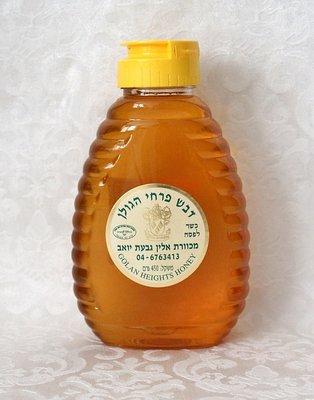 Biologische Honing van de Golan Hoogte in handige kunststof knijpfles van 450ml