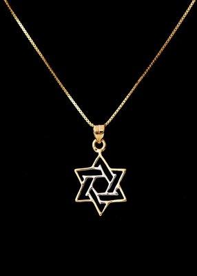 Davidster hangertje, open bicolor (Binnenste ster witgoud, buitenste geelgoud) verguld van de Israelische ontwerpster Marina
