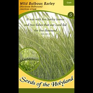 Bijbelse zaadjes uit Israel: Barley / Gerst