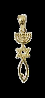 Messiaans Zegel hangertje large 14K goud van Ben Sadya