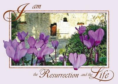 Bijbelse Wenskaart uit Israel met een prachtige foto uit de Graftuin in Jeruzalem en in het Engels: 'Ik ben de opstanding en het leven'