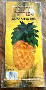 Ananas voor de Loofhut, zeer groot. Uitgevouwen met blad ongeveer 60 cm hoog
