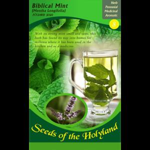 Bijbelse zaadjes uit Israel: Bijbelse Mint