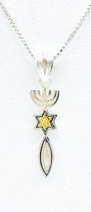 Hangertje met Messiaans Zegel, bijzonder zilveren hangertje van Marina met 9Kt gouden detail, aan 2 kanten draagbaar