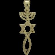 Messiaans Zegel hangertje, mooi zilver met geelgoud verguld Messiaans Zegel hangertje met 2 mogelijkheden