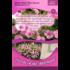 Bijbelse Bloemzaadjes uit Israel: Linen / Roze Linen